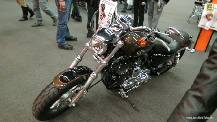 Harley Davidson  Custom Anniversary Edition Veiw Frount